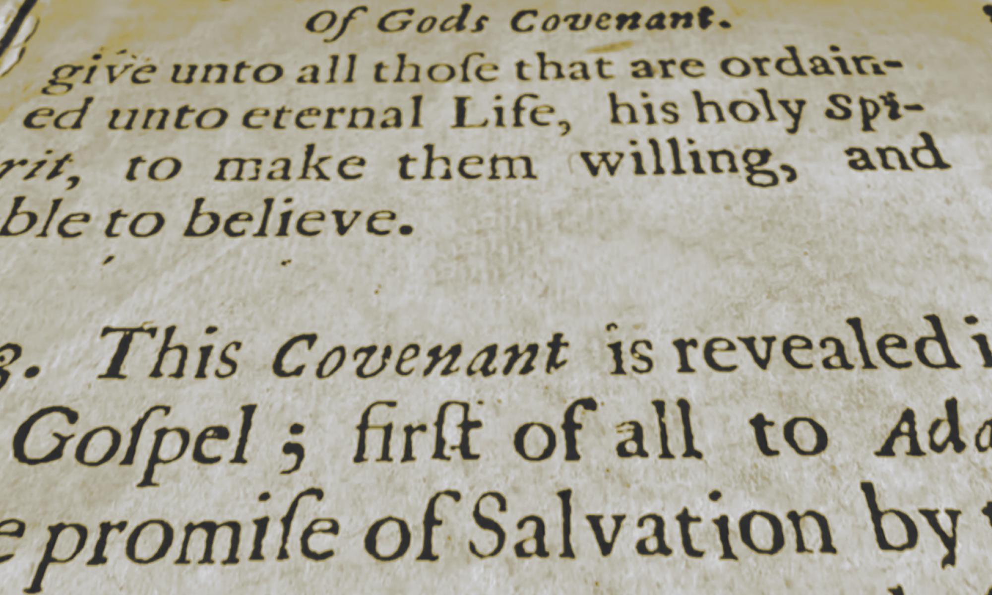 La Théologie de l'alliance : une bibliographie baptiste.
