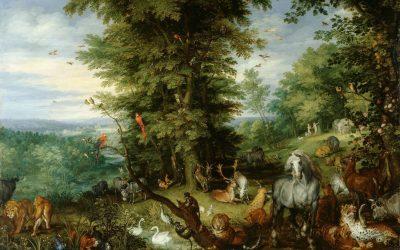 L'étrange langage du théisme classique — Keith Mathison
